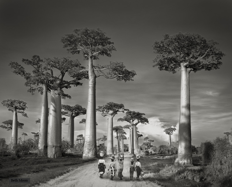 Beth Moon - Off to Market