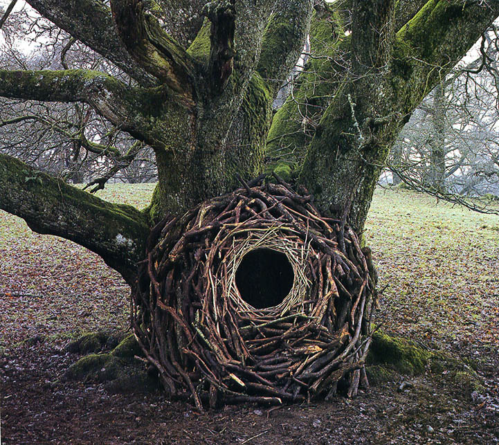 andy-goldsworthy9