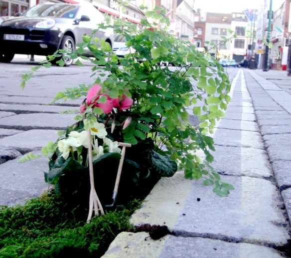 planting-flowers-in-potholes-12