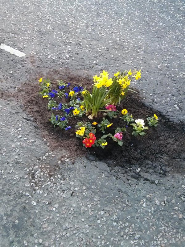planting-flowers-in-potholes-6